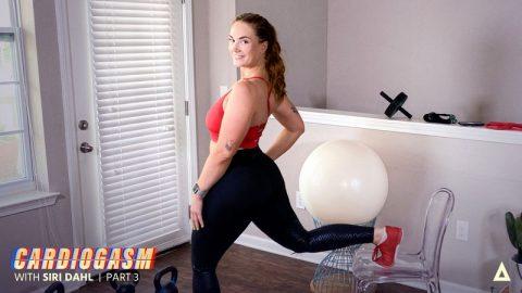 Yoga pants deville cherie Cherie Devile